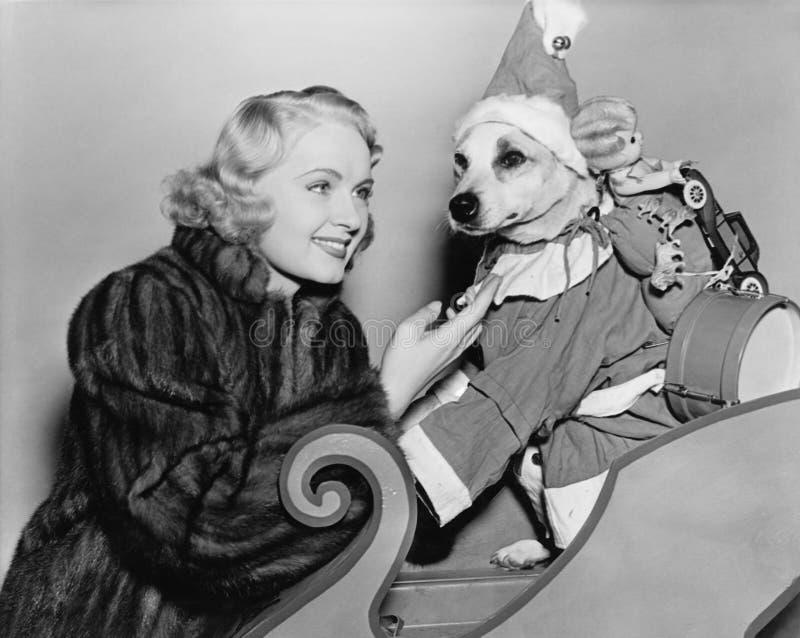 Kvinna med hunden i juldräkt (alla visade personer inte är längre uppehälle, och inget gods finns Leverantörgarantier som arkivbilder