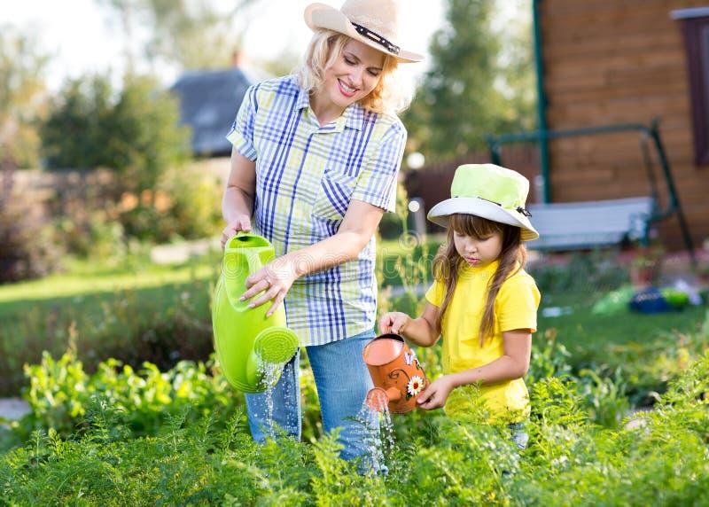 Kvinna med lilla flickan som bevattnar växter i trädgård royaltyfri fotografi