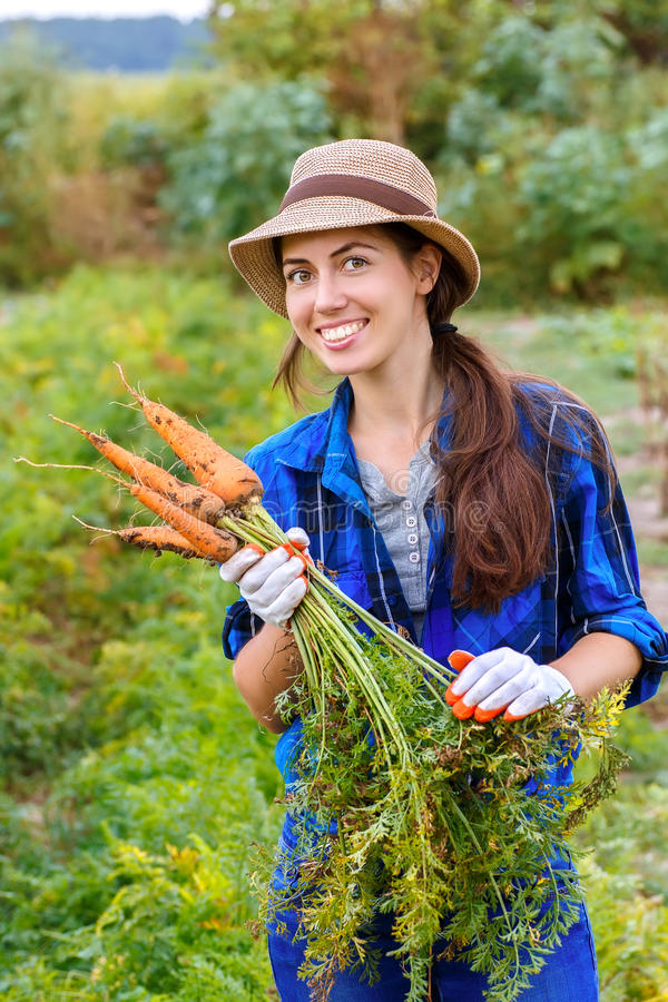 Kvinna med morötter i en grönsakträdgård arkivbild