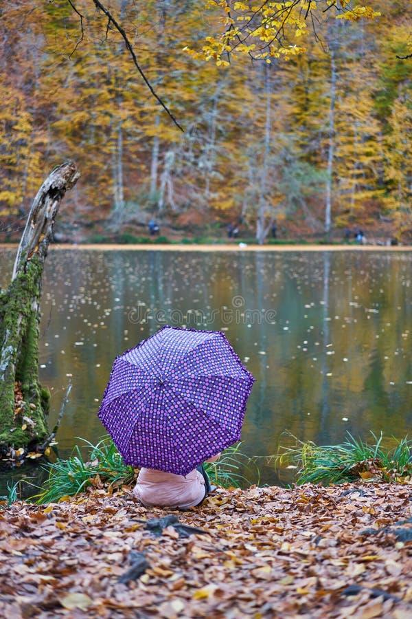 Kvinna med paraplyet arkivbilder