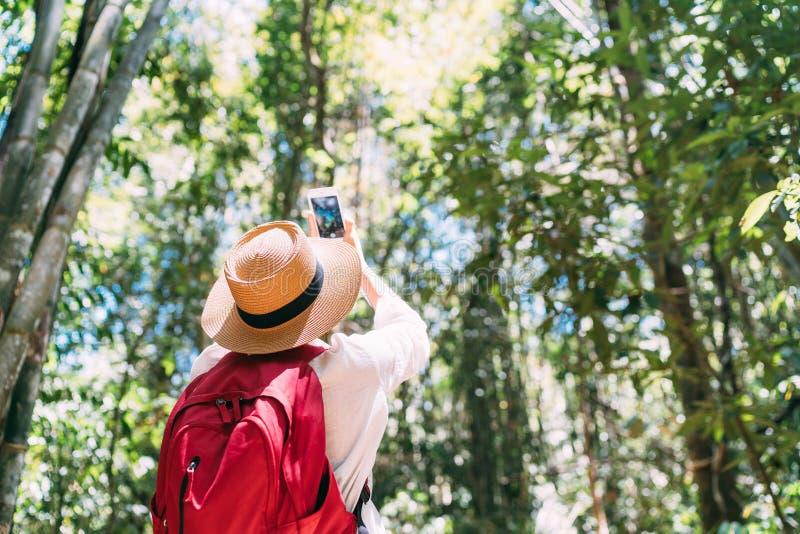 Kvinna med ryggsäcken på trek till och med djungelskogen som stoppar ta bilden med smartphonen arkivbilder