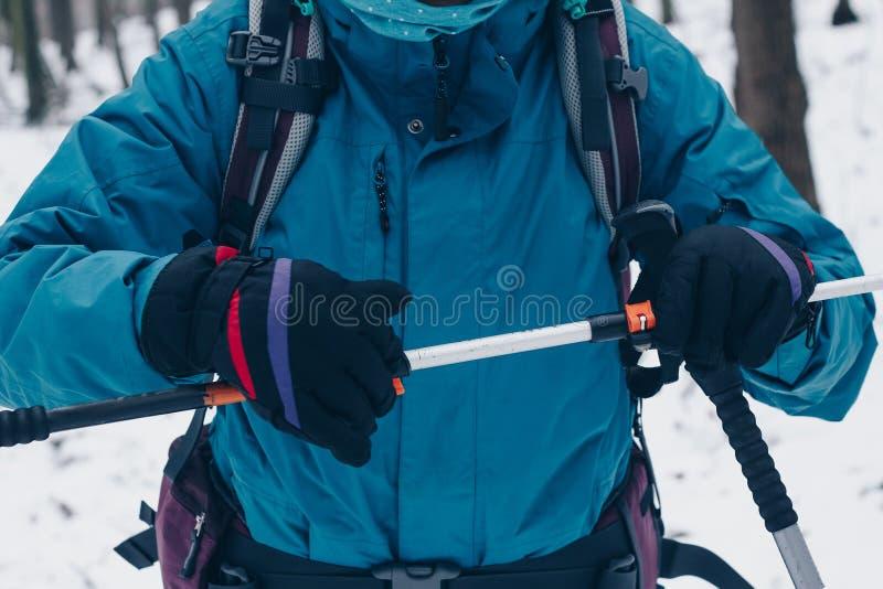 Kvinna med ryggsäcken som justerar trekking poole i vinterskog arkivfoto