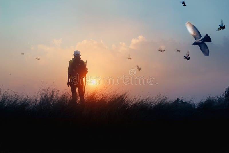 Kvinna med ryggsäcken som tycker om solnedgång på gräsmaximumkullen Fågel i skyen Turist- handelsresande på landskap för solnedgå arkivbilder