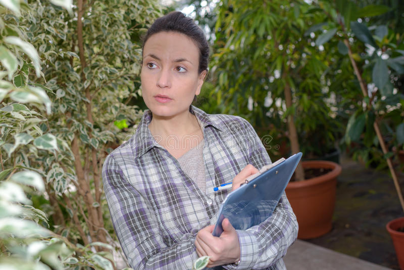 Kvinna med skrivplattan som kontrollerar växter i trädgårds- mitt arkivfoto