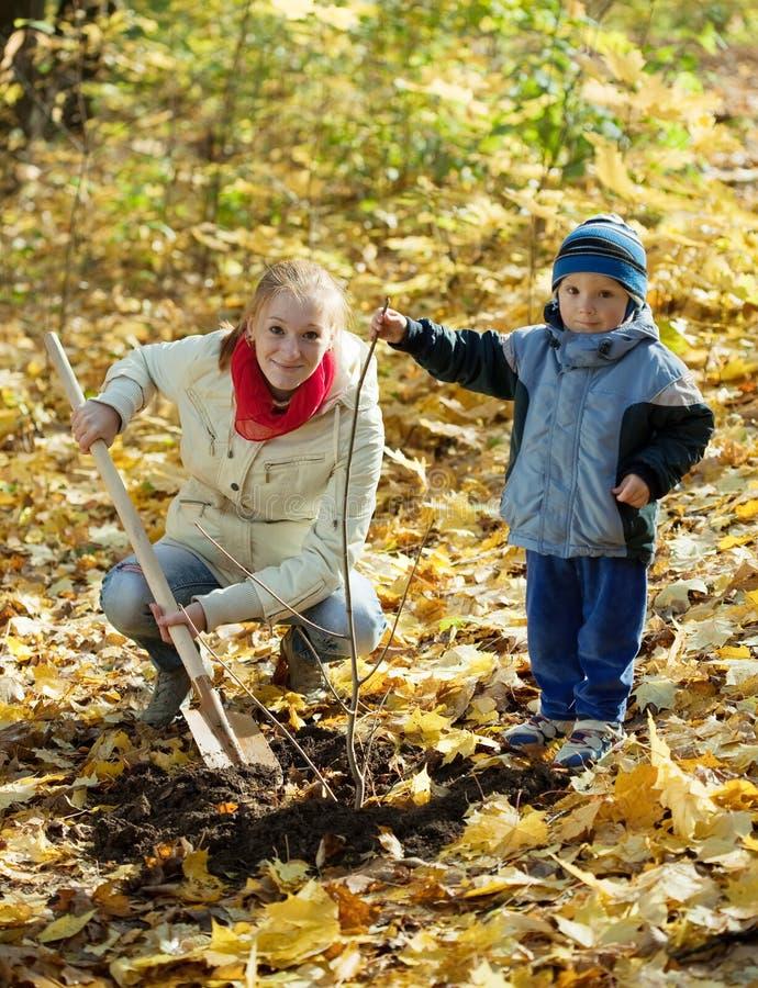 Kvinna med sonen som nollställer treen i höst arkivfoto