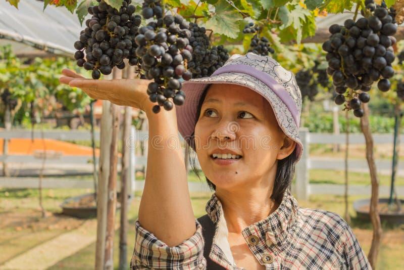 Kvinna med utomhus- druvor arkivfoton
