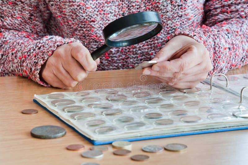 Kvinna-numismatiker beskådar mynt från ett myntalbum till och med en magnif royaltyfri foto