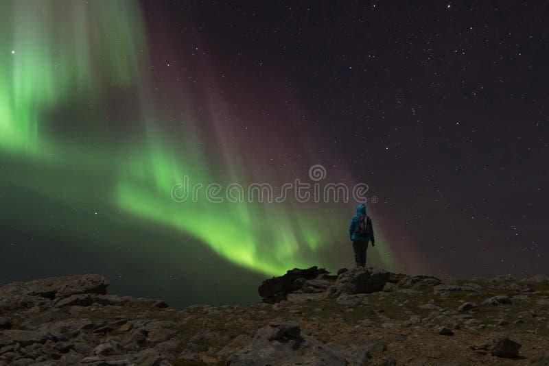 Kvinna observera de nordliga ljusen från en klippa under natten fotografering för bildbyråer