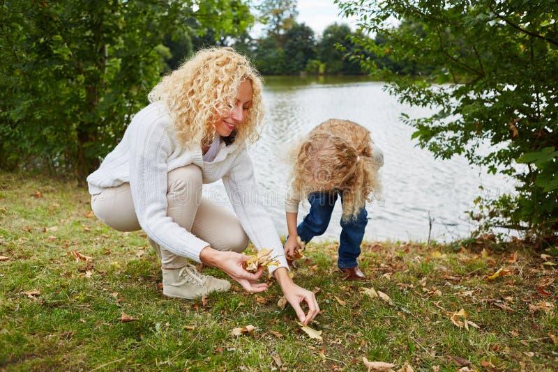 Kvinna och barn som samlar sidor arkivfoto