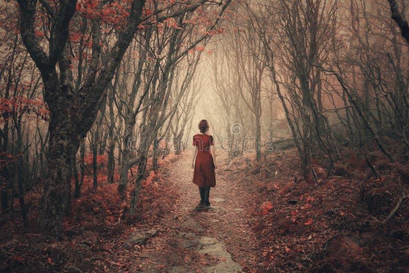 Kvinna och dimmig skog. royaltyfri foto