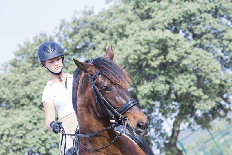 Kvinna och häst arkivfoto