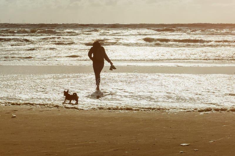 Kvinna och hennes hund som går på stranden på solnedgången eller soluppgång royaltyfria bilder