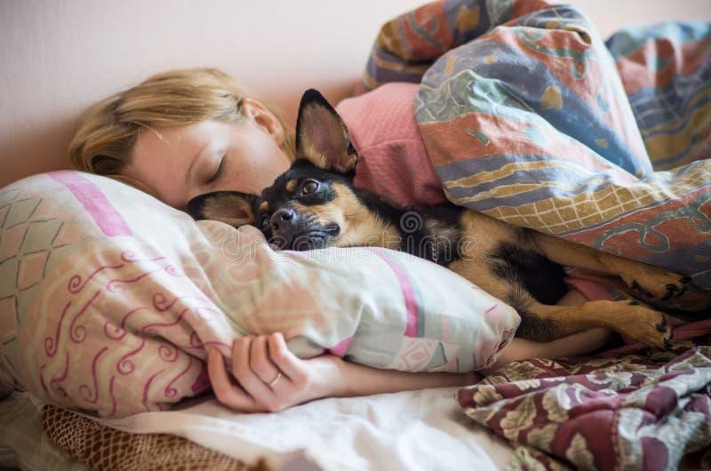 Kvinna och hennes hund som sover i sängen royaltyfria bilder