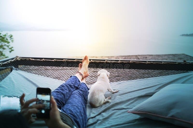 Kvinna och hund som kopplar av med lyckasinnesrörelse på netto vagga royaltyfria foton