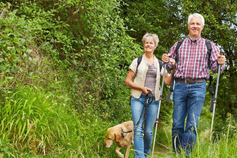 Kvinna och man som går med hunden i natur fotografering för bildbyråer