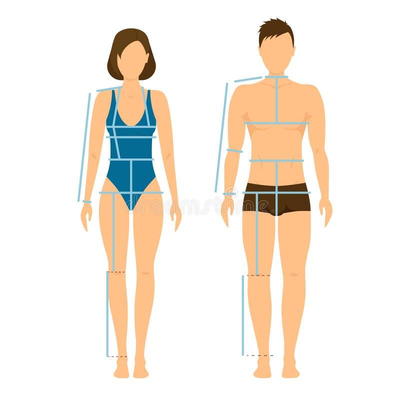 Kvinna- och mankropp Front Back för mätning vektor royaltyfri illustrationer