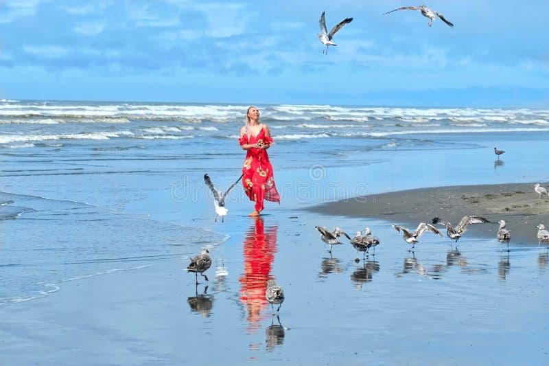 Kvinna- och seagullsfåglar på stranden vid havet royaltyfria foton