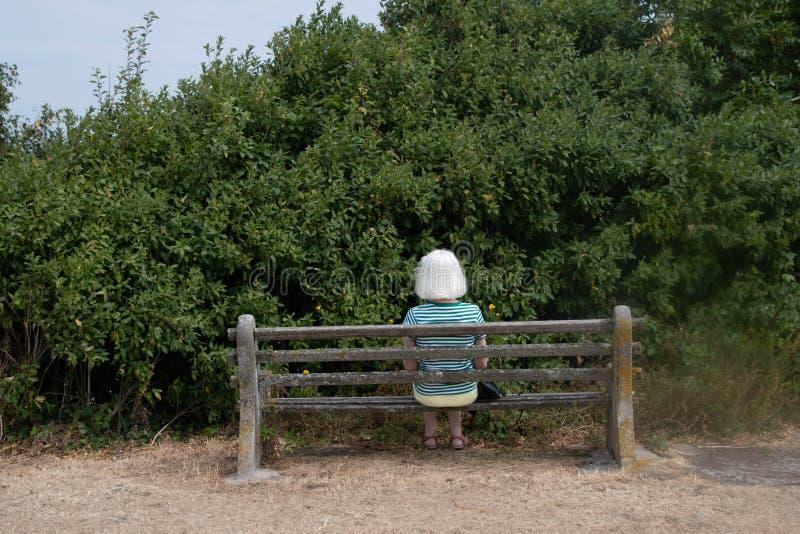Kvinna på en bänk med ingen sikt royaltyfri foto