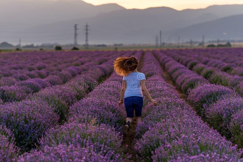 Kvinna på lavendelfält royaltyfri foto