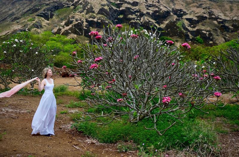 Kvinna på semestern som ser Plumeriaträdet med rosa blommor arkivbilder