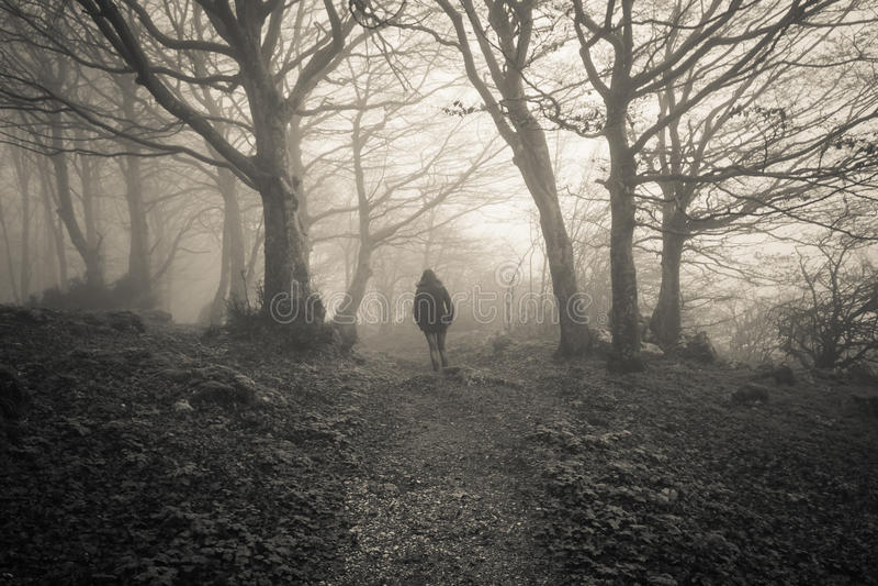 Kvinna som är borttappad i den mörka skogen arkivbild