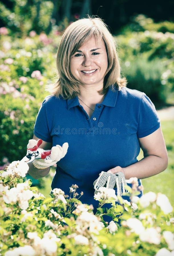 Kvinna som arbeta i trädgården på vita blommor och innehavträdgårds-hjälpmedel arkivbild