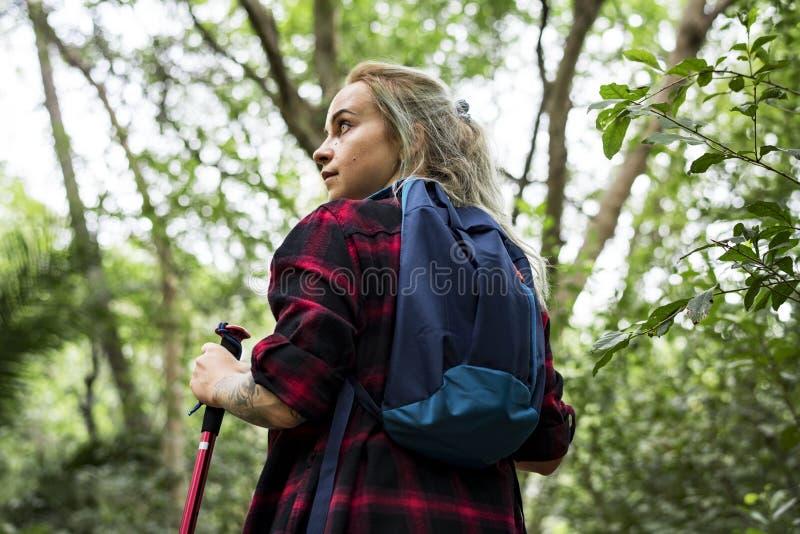 Kvinna som bara trekking i en skog arkivfoton