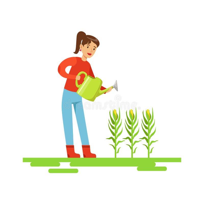 Kvinna som bevattnar havreskördar, bondeWorking At The lantgård och säljer på naturlig organisk produktmarknad stock illustrationer