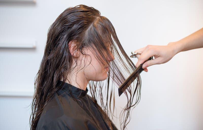 Kvinna som får hår utformat royaltyfri fotografi