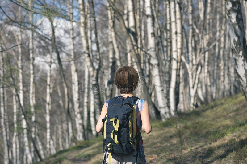 Kvinna som fotvandrar i skogen, en person som går i skogsmarken som vandrar sommaraffärsföretaglopp, bakre sikt, tonad bild fotografering för bildbyråer