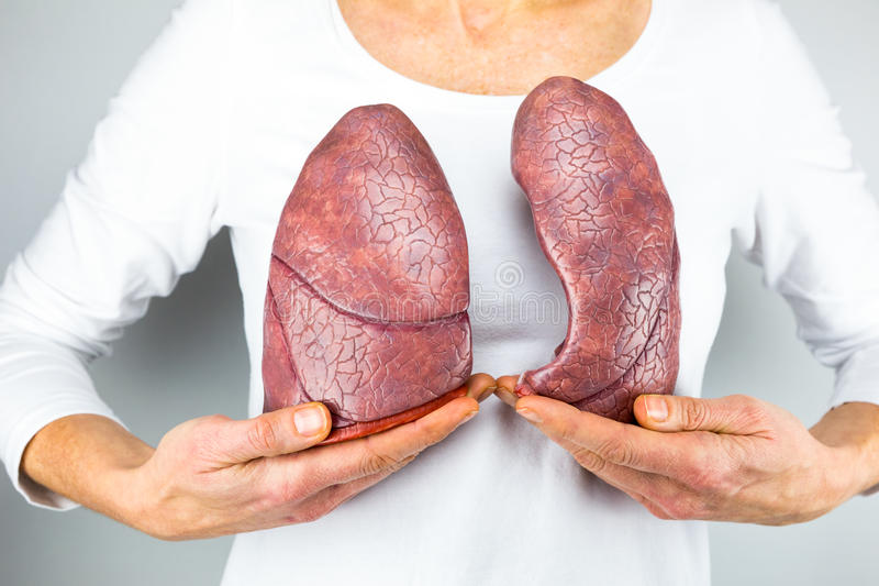 Kvinna som framme visar två lungor av bröstkorg arkivbilder