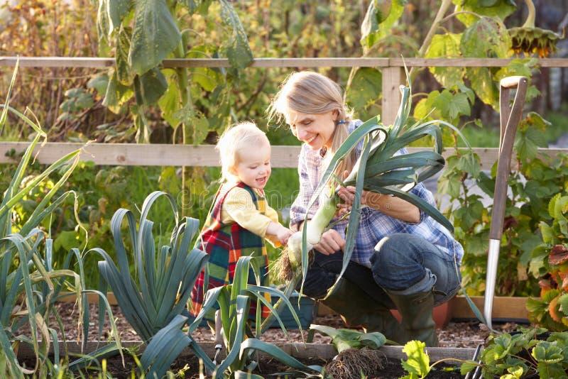 Kvinna som fungerar på odlingslott med barnet arkivfoton