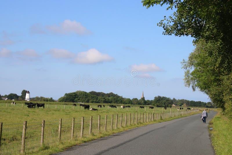 Kvinna som går bygdvägen Pilling Lancashire royaltyfria bilder