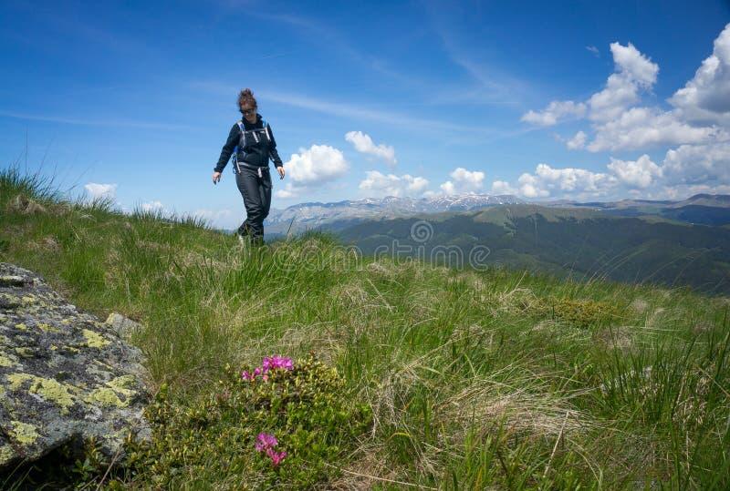 Kvinna som går i bergen royaltyfri fotografi
