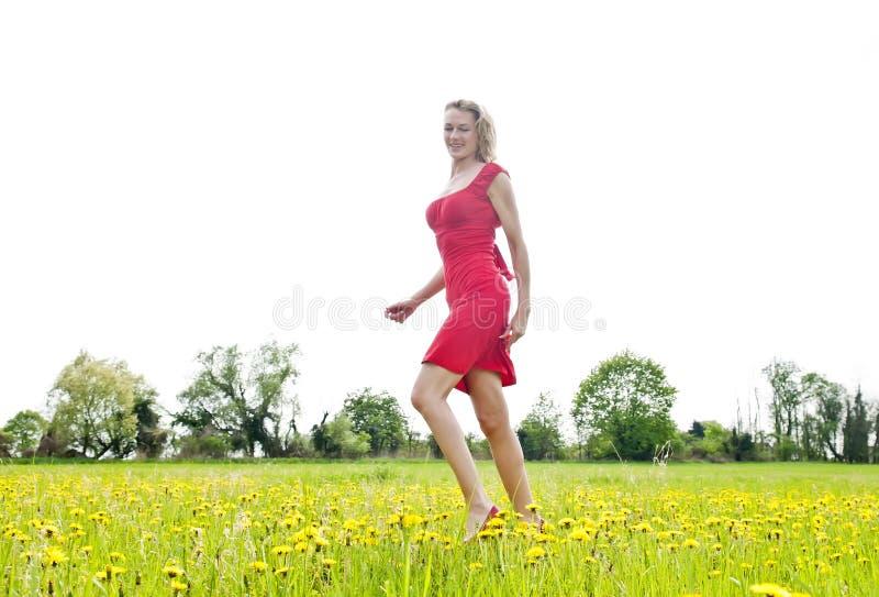 Kvinna som går i fält av blomman arkivfoto
