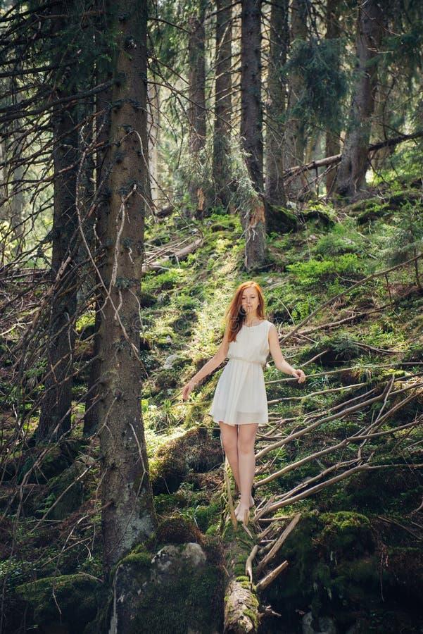 Kvinna som går i gåtaskogen arkivfoton