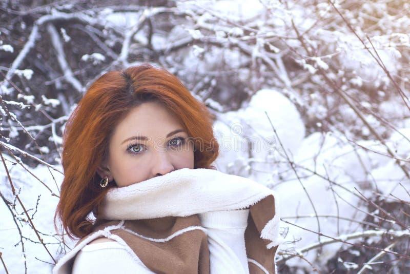 Kvinna som går i vinter i skogen arkivfoto