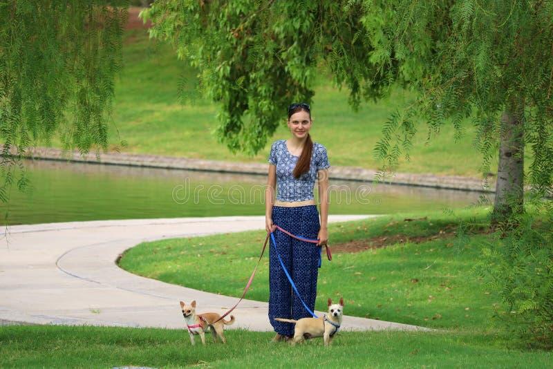 Kvinna som går med hundkapplöpning royaltyfri fotografi