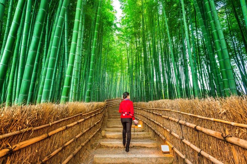 Kvinna som går på bambuskogen i Kyoto, Japan royaltyfri bild