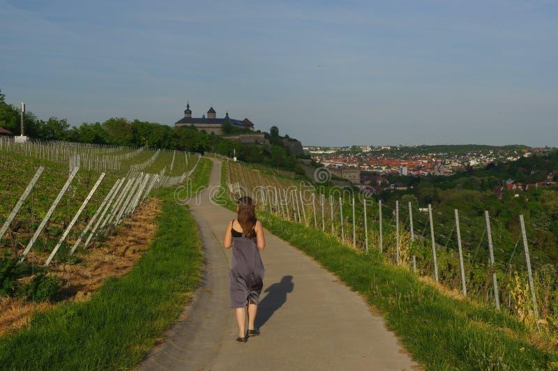 Kvinna som går på en väg med vingårdlandskapsikt till slotten Marienberg i Wuerzburg Bayern, Tyskland royaltyfri foto