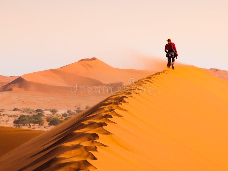 Kvinna som går på kanten av den röda dyn i blåsväder, Sossusvlei, Namib öken, Namibia arkivbilder