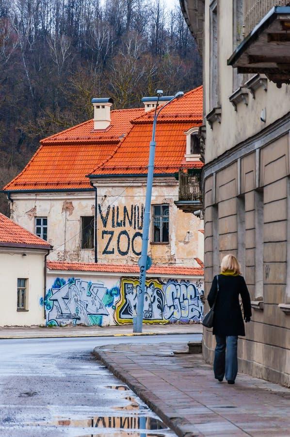 Kvinna som går vid den Radvilaites gatan med klassiska europeiska arkitekturbyggnader, några som målas med grafitti royaltyfria foton