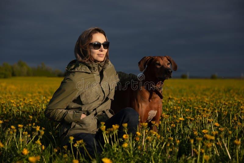 Kvinna som g?r med en hund i skogen Rhodesian Ridgeback i f?ltet royaltyfri foto