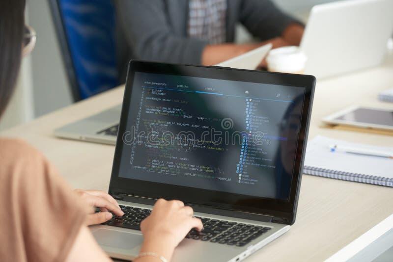 Kvinna som i regeringsställning programmerar på bärbara datorn fotografering för bildbyråer