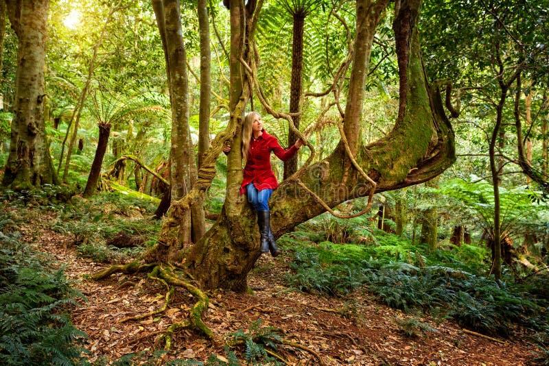 Kvinna som kopplar av i ett träd bland naturs rainforestträdgård arkivfoto
