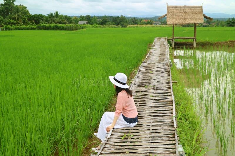 Kvinna som kopplar av på bambubanan över vibrerande gröna Paddy Field, Nan Province, nordliga Thailand arkivfoto