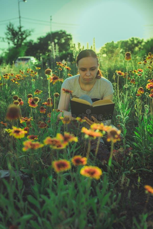 Kvinna som läser en bok i ett grönt fält, bland gräset och blommorna royaltyfri fotografi