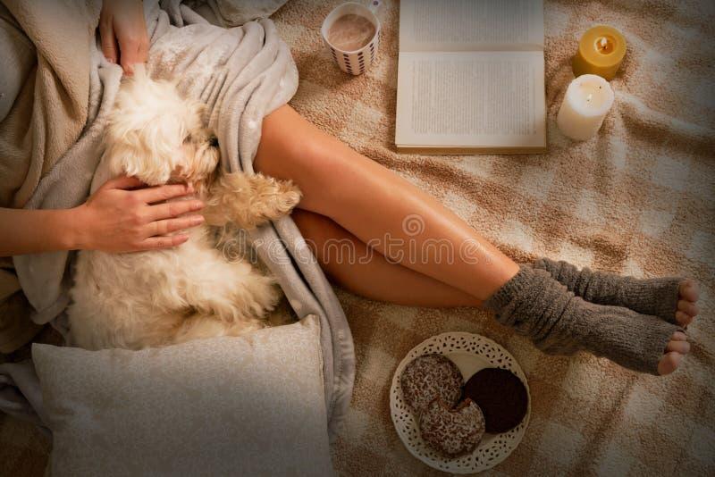 Kvinna som ligger på säng med hunden arkivbilder