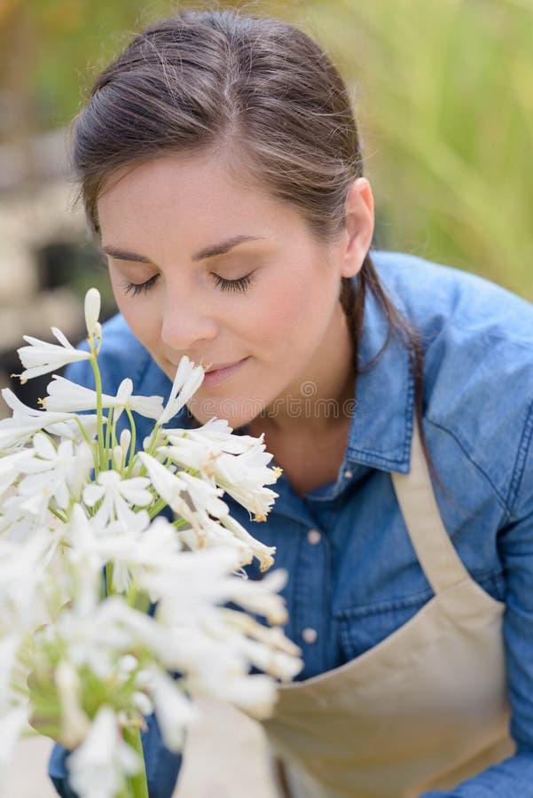 Kvinna som luktar blomman, medan arbeta som trädgårdsmästare royaltyfria bilder