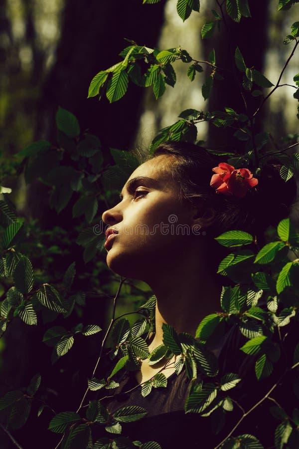 Kvinna som poserar med blomman i brunetth?r i tr? royaltyfri foto